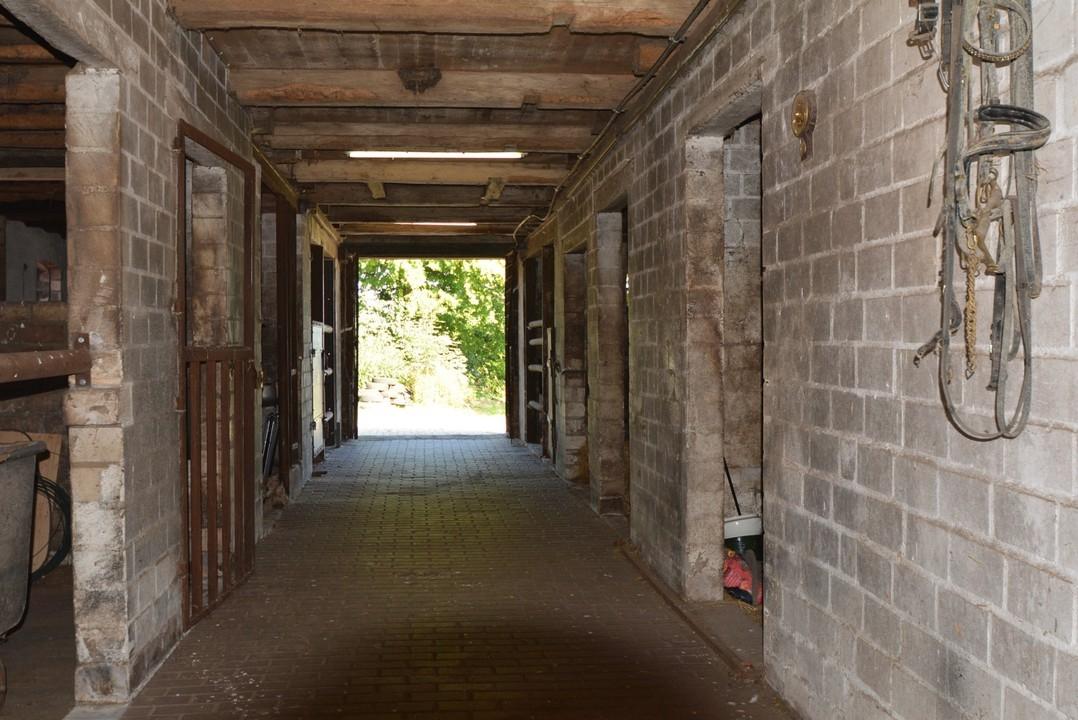 Pferdestall Innen